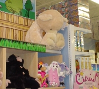 Teddy Bear at Toys R Us